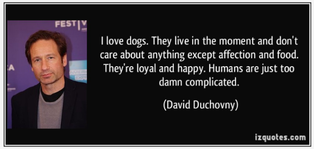 Oct 16 - LOYAL by iz quotes - DOGS